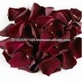 バラの花びら/乾燥したバラの花びら/赤い色バラの花びら/
