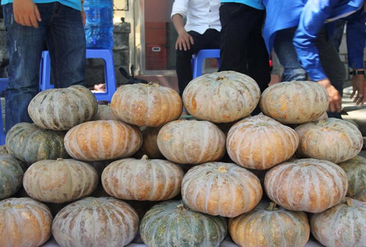 pumpkin-vietnam.jpg
