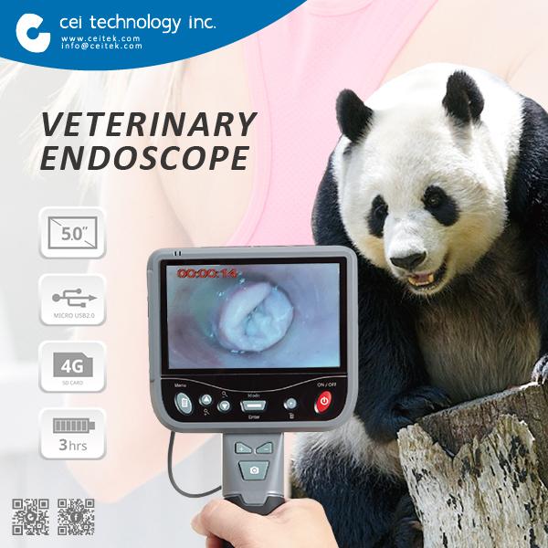 Date 2017 Numérique Médecine Interne Endoscope Vétérinaire Équipement