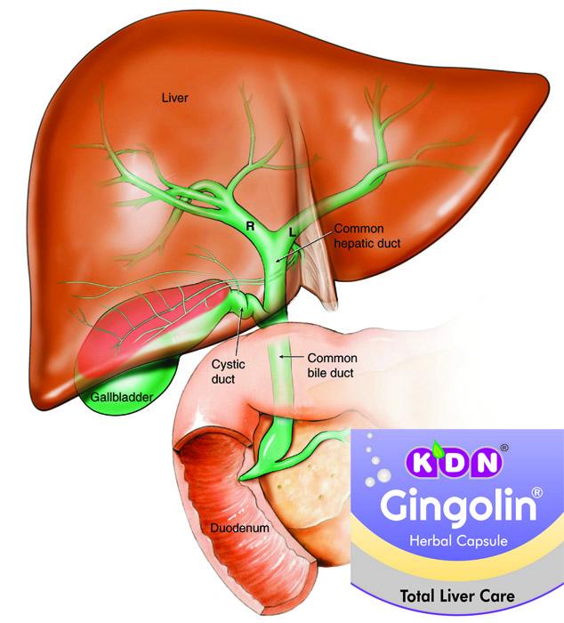 hepatitis d symptomen