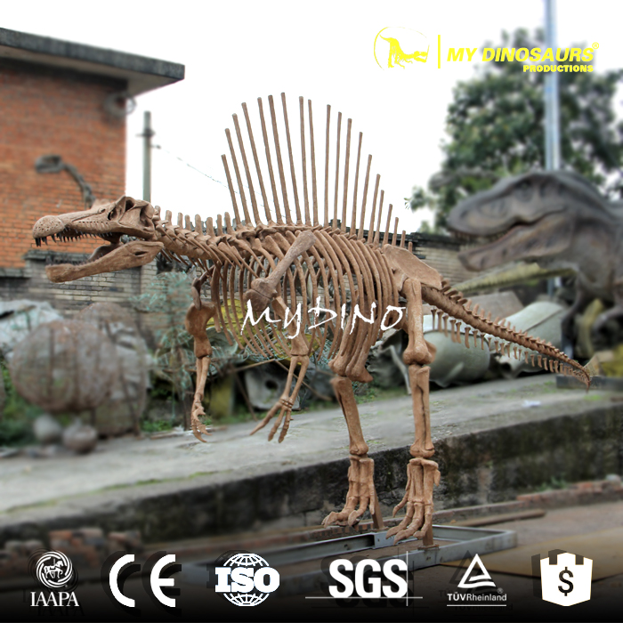 spinosaurus skeleton (2).jpg