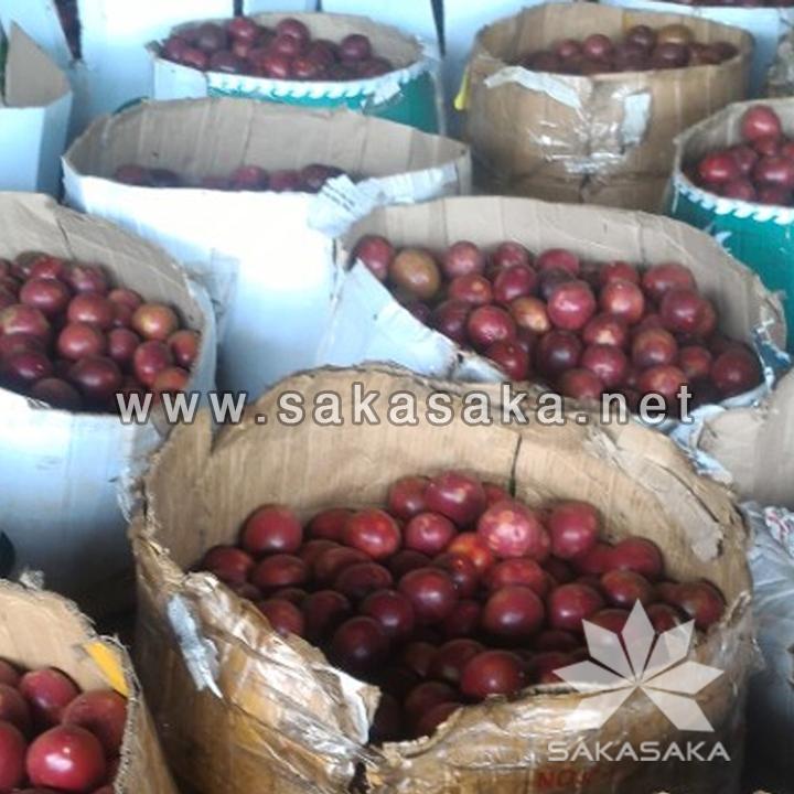 passion-fruit-w.jpg