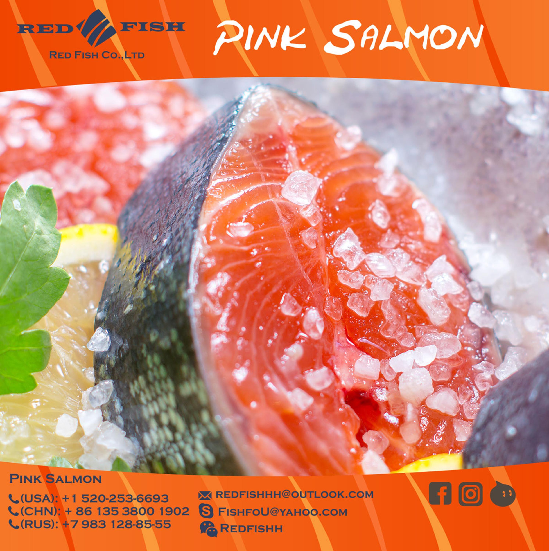 pink-salmon.jpg