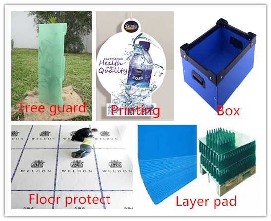 extruded pp sheet for printing